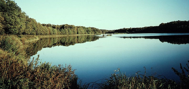 Kozlowiecki Park Krajobrazowy