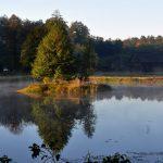 Lasy Janowskie – Park Krajobrazowy