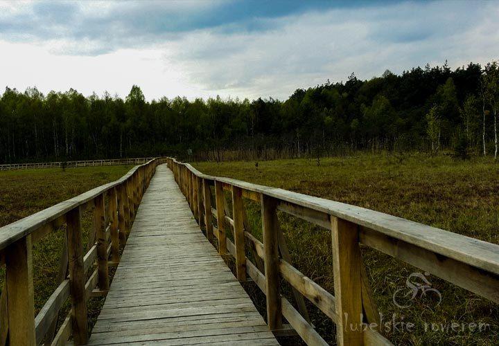 Poleski Park Narodowy - droga na kładce