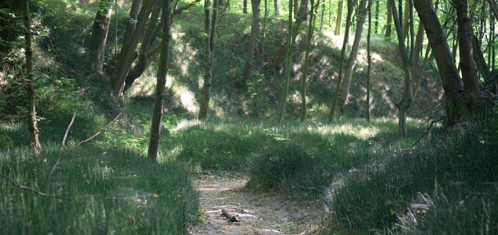 Szczebrzeszynski Park Krajobrazowy