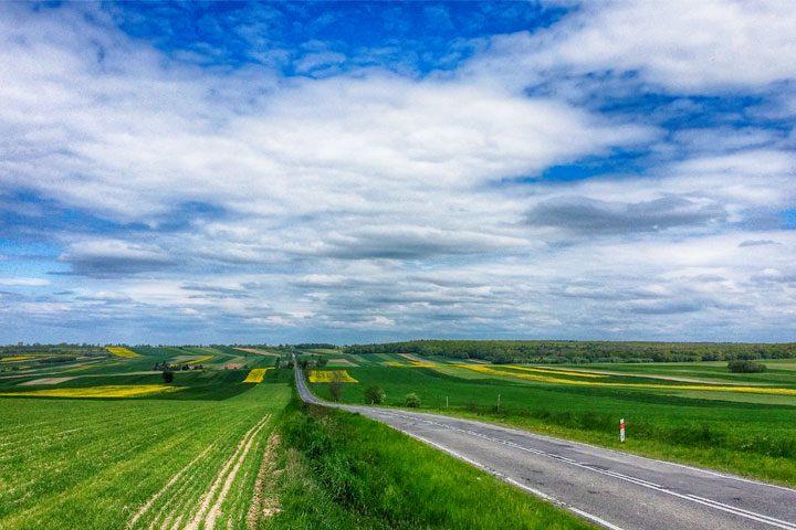 Droga powrotna do Krzczonowa