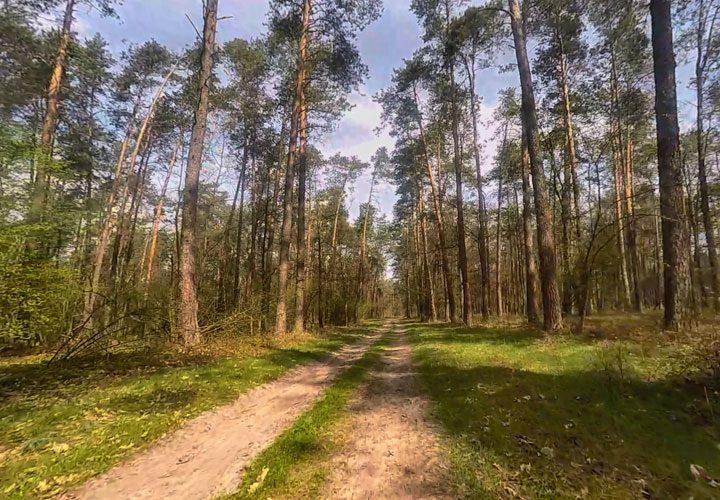 Trasa rowerowa Lublin - Kozłówka fot 2