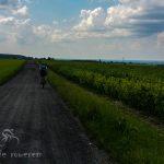 Trasa rowerowa: Kazimierz Dolny » Kraśnik