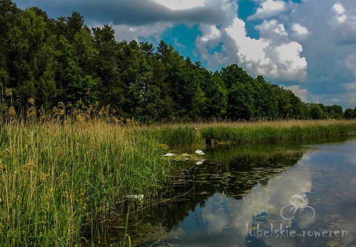 Stawy - Wrzelowiecki Park Krajobrazowy